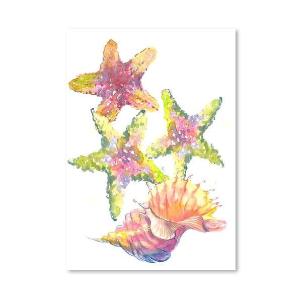 Plakát Aquatic Sea World