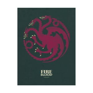 Obraz Pyramid International Game of Thrones Targaryen, 60 x 80 cm