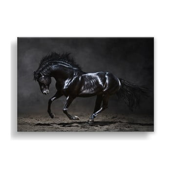 Tablou Styler Canvas Silver Uno Horse, 85 x 113 cm de la Styler