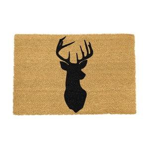 Rohožka Artsy Doormats Stagshead,90x60cm