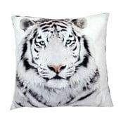 Polštář Animals White Tiger, 42x42 cm