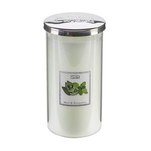 Aroma svíčka Copenhagen Candles  Mint & Eucalyptus Talll, doba hoření 70 hodin