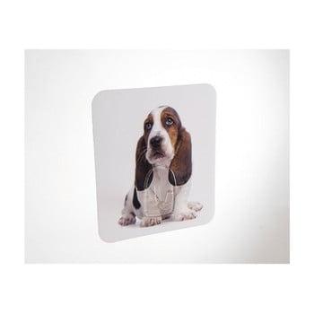 Cârlig de perete Compactor Magic Dog de la Compactor