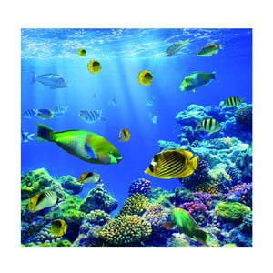Tapeta Underwater World, 300x280 cm