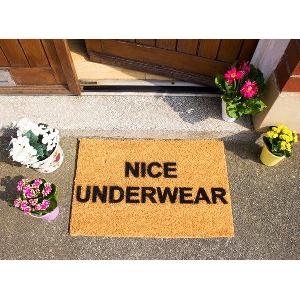 Rohožka Artsy Doormats Nice Underwear,40x60cm