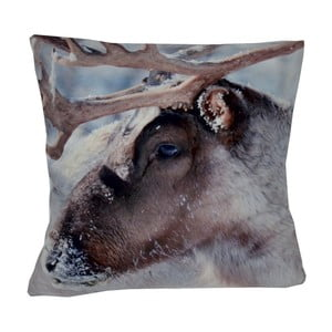 Polštář Animals Reindeer, 42x42 cm