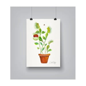 Poster Americanflat Venus Fly Trap, 30 x 42 cm