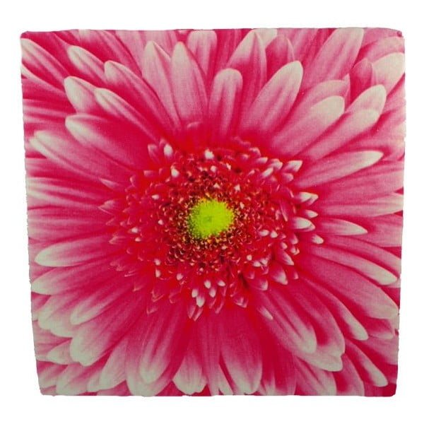Sedák Flower Pink 50x50 cm