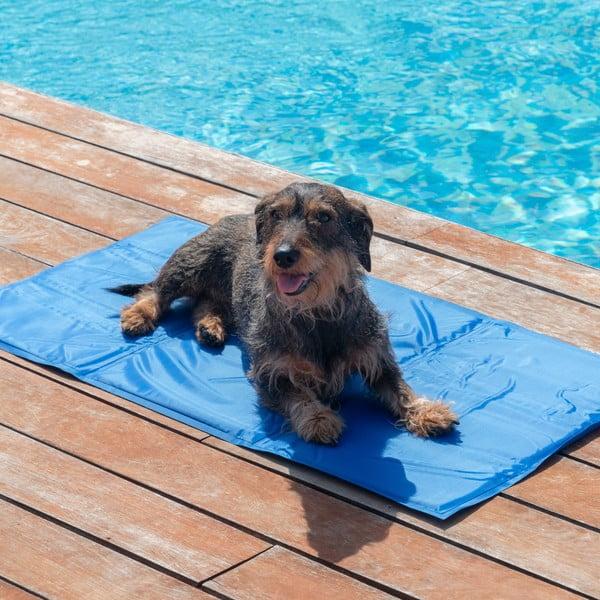 Chladivý kobereček pro domácí zvířata InnovaGoods, 90x50cm