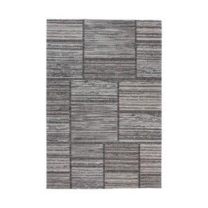 Šedý koberec Kayoom Vivis, 120 x 170 cm