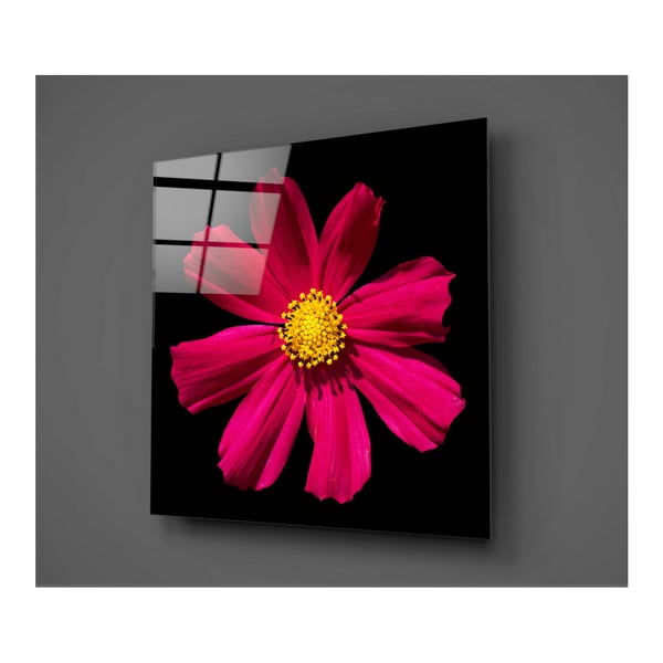 Czarno-czerwony szklany obraz Insigne Flowerina, 30x30 cm
