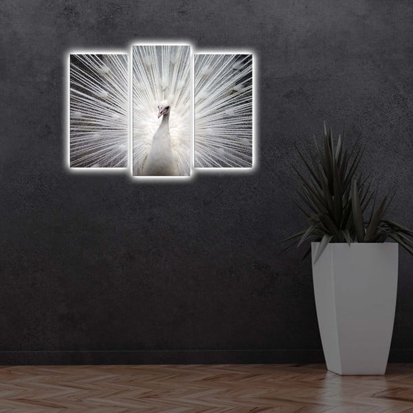 Podsvícený vícedílný obraz Peacock, 66x45 cm
