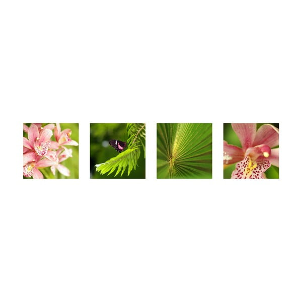 Set 4 fotoobrazů Orchidej, exkluzivní edice